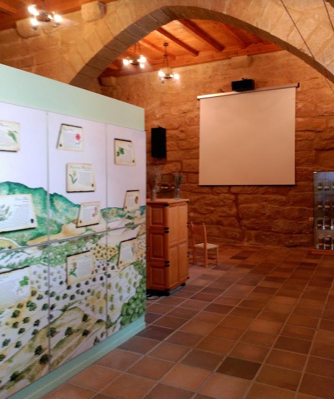 museo-loscos